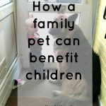 How a family pet can benefit children