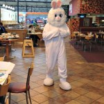 Afternoon Tea with the Easter Bunny at Wyevale Garden Centre