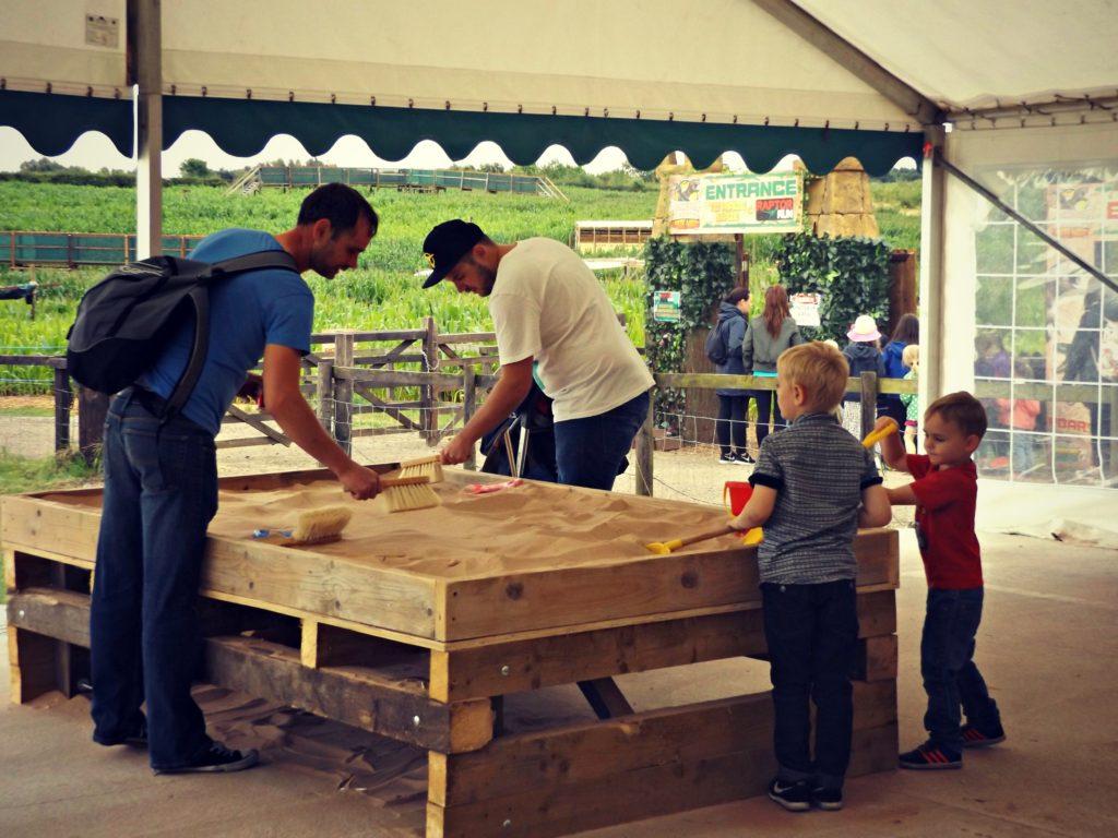 Dinosaur Awakens Maize Maze at National Forest Adventure Farm | www.coffeecakekids.com