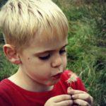 Blowing Dandelions #MySundayPhoto