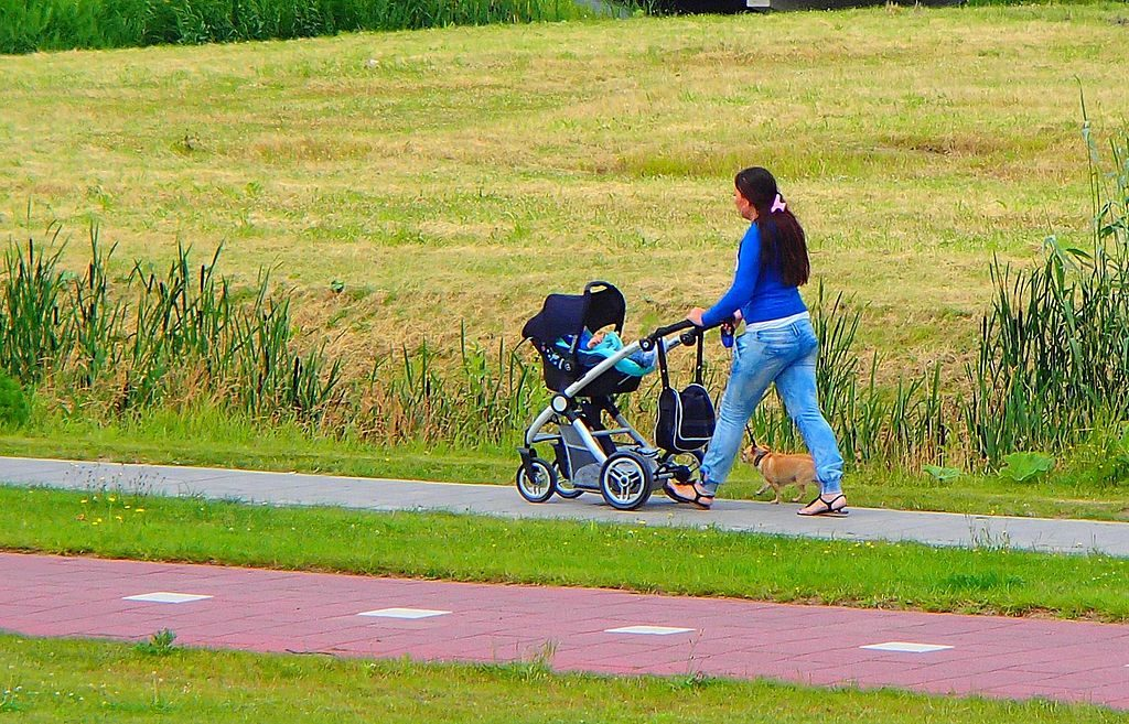 1024px-walking_female_with_stroller_and_dogs