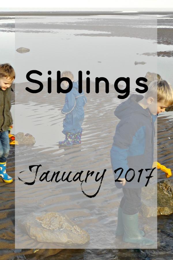 Siblings 2017