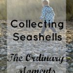 Collecting Seashells | The Ordinary Moments