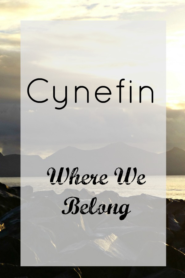 Cynefin - Where We Belong