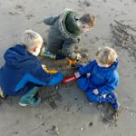 Diggers in the Sand | My Sunday Photo