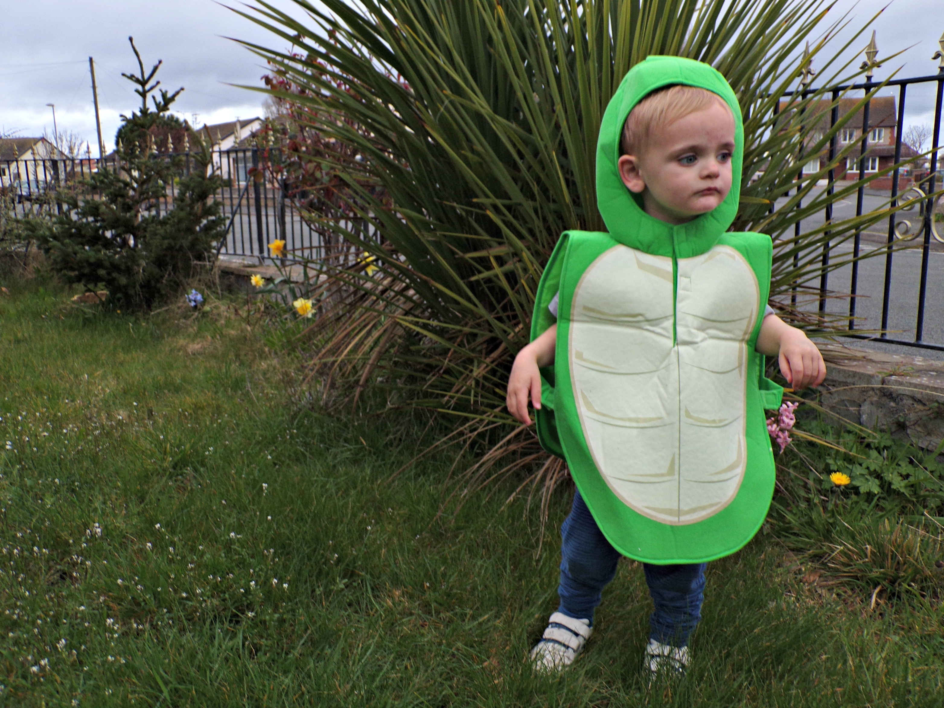 Tortoise Tabard from Pretend to Bee