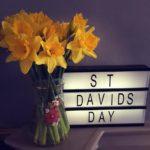 St David's Day | My Sunday Photo