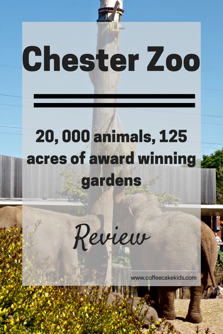 Chester Zoo has more than 25,000 animals and 125 acres of award winning gardens. The perfect day out for the whole family.
