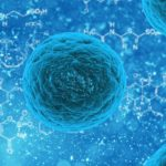 Why You Should Think About Stem Cell Collection