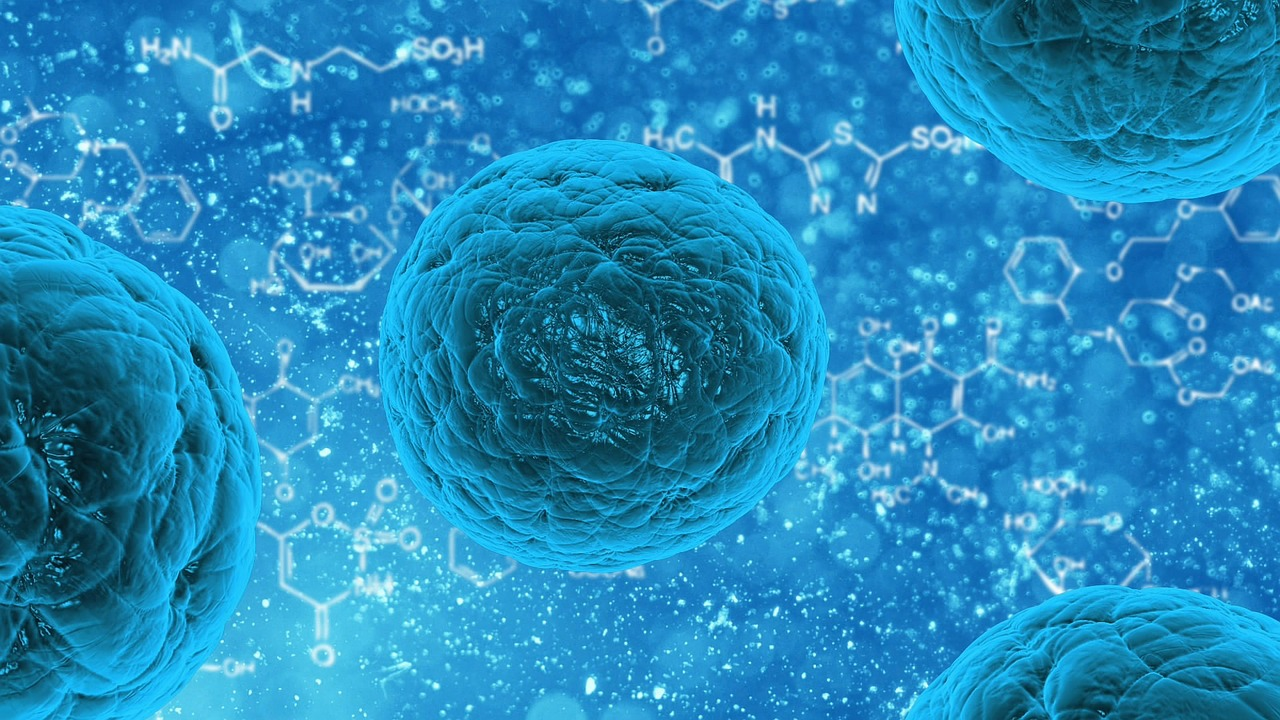 Stem cell collection