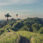 Why You Should Visit Bali