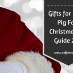 Gifts for Peppa Pig Fans | Gift Guide 2017