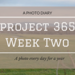 Project 365: Week Two