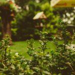 Garden Design Trends for 2018