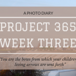 Project 365: Week Three