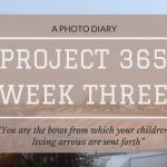 Project 365: Week Three