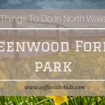 Things To Do In North Wales | Greenwood Forest Park