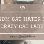 From Cat Hater to Crazy Cat Lady | My Pet Story