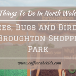 Things To Do In And Around North Wales | Bees, Bugs And Birds at Broughton Shopping Park