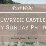 Gwrych Castle | My Sunday Photo