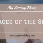 Pages Of The Sea | My Sunday Photo