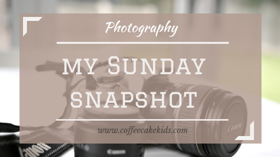 My Sunday Snapshot