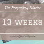 13 Weeks | The Pregnancy Diaries