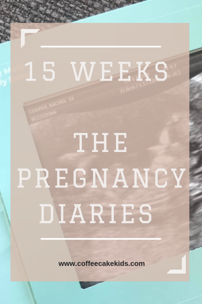 15 Weeks - The Pregnancy Diaries