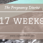 17 weeks | The Pregnancy Diaries