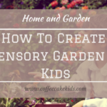 How To Create A Sensory Garden For Kids