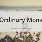Big Brothers | The Ordinary Moments